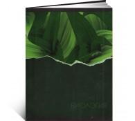 Тетрадь Биология 48 листов