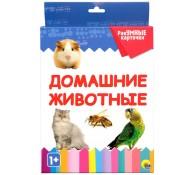 Домашние животные. Разумные карточки