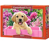 500 элементов Щенок в коробке