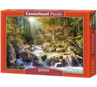 2000 элементов Лесной ручей